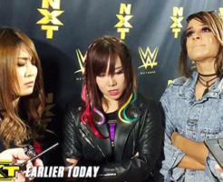 WWE女子レスラー共闘