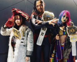 日本がほこる世界で活躍するレスラー