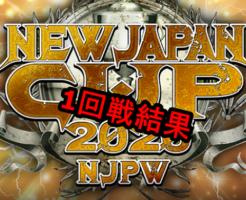 ニュージャパンカップ1回戦